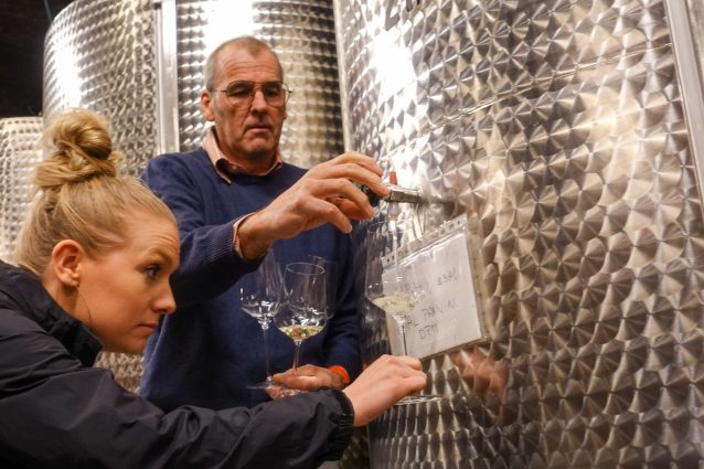 Edi Kante offering tank samples of his Malvasia